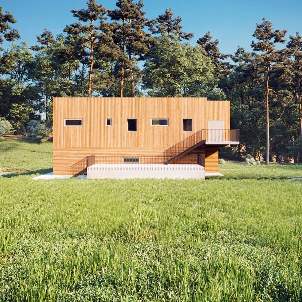 Exterior rendering / Wooden House in the forest